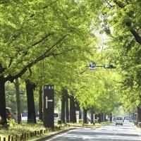 大阪の介護・障害者作業所設立